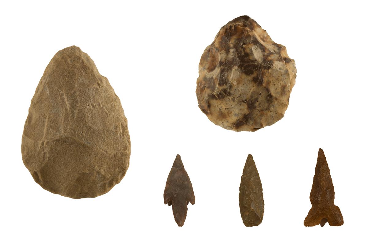 Werktuigen van Homo erectus, Homo neanderthalis en Homo sapiens sapiens