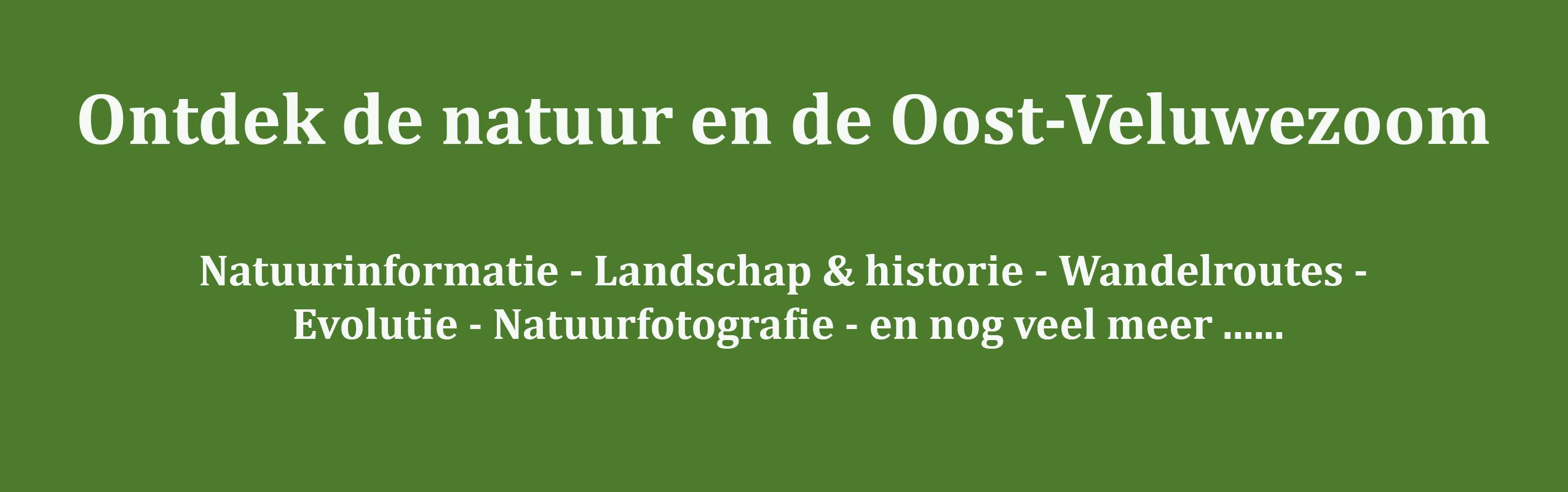 De Oost-Veluwezoom is een gebied dat ligt tussen Arnhem en Dieren, ingeklemd tussen de stuwwallen van de Veluwe en de IJssel. Kenmerkend voor de Oost-Veluwezoom is het heuvelachtige landschap met veel oude bos- en heidegebieden, uiterwaarden en de rijke cultuurhistorie.