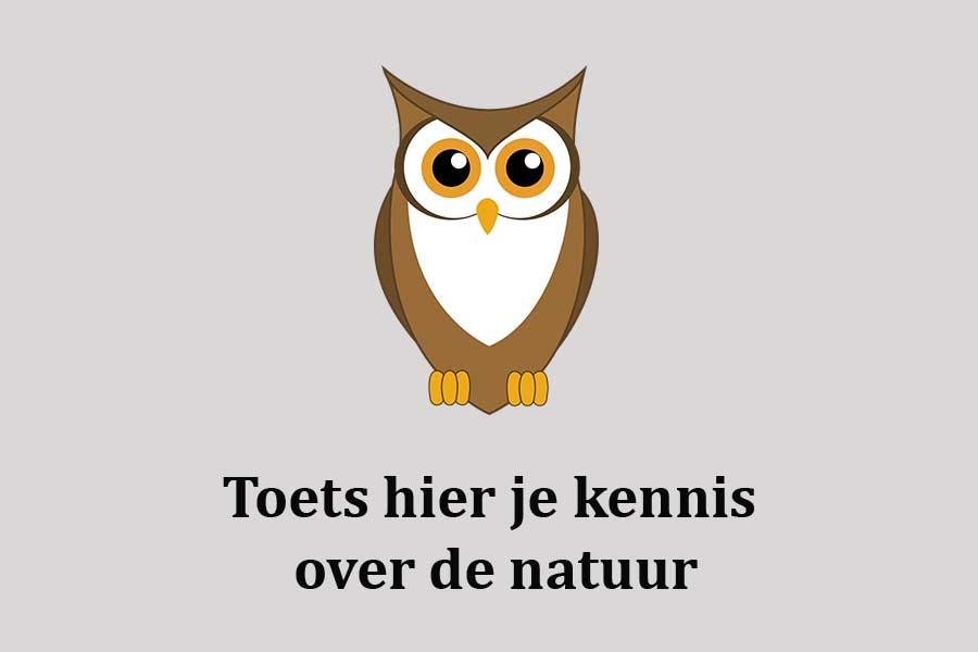 Toets je kennis over de natuur