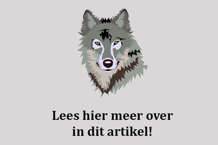 komt de wolf ook naar de Veluwezoom