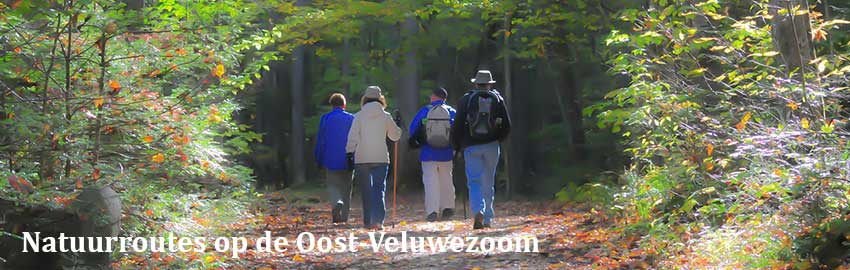 Natuurroutes op de Oost-Veluwezoom