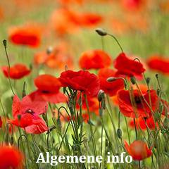 algemene info over planten