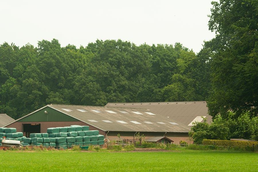 de Zwitserse boerderij