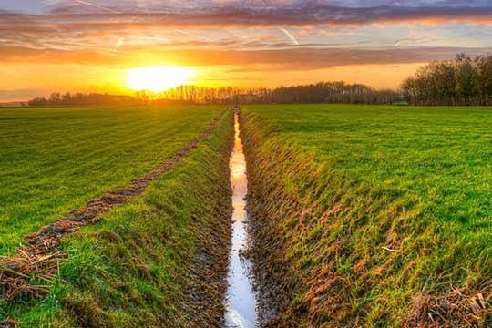 Afwateringssloten zoals deze zijn veel te zien in het huidige agrarische landschap.